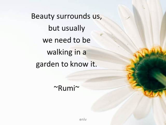 Quote from Rumi - Esther Neela Blog