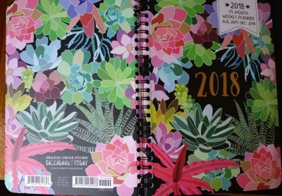 2018 Diary / Planner by Orange Circle Studio, Succulents - Esther Neela Blog