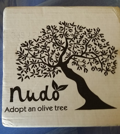Nudo: Adopt an Olive Tree in Italy - Esther Neela Blog